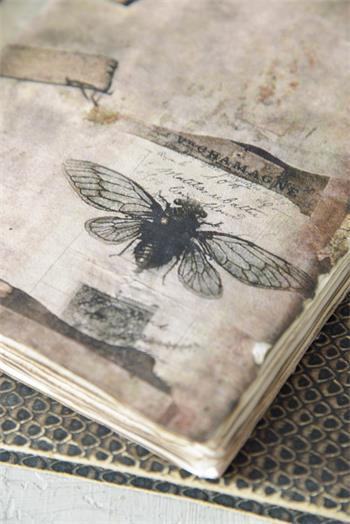 Tagebuch-JDL